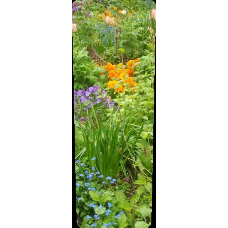 Container kliko - Voorjaars tuin stickers