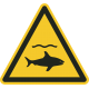 Pas op haaien bordjes