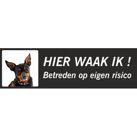 Dwergpinscher 'Hier waak ik'-stickers (zwart, laag model)
